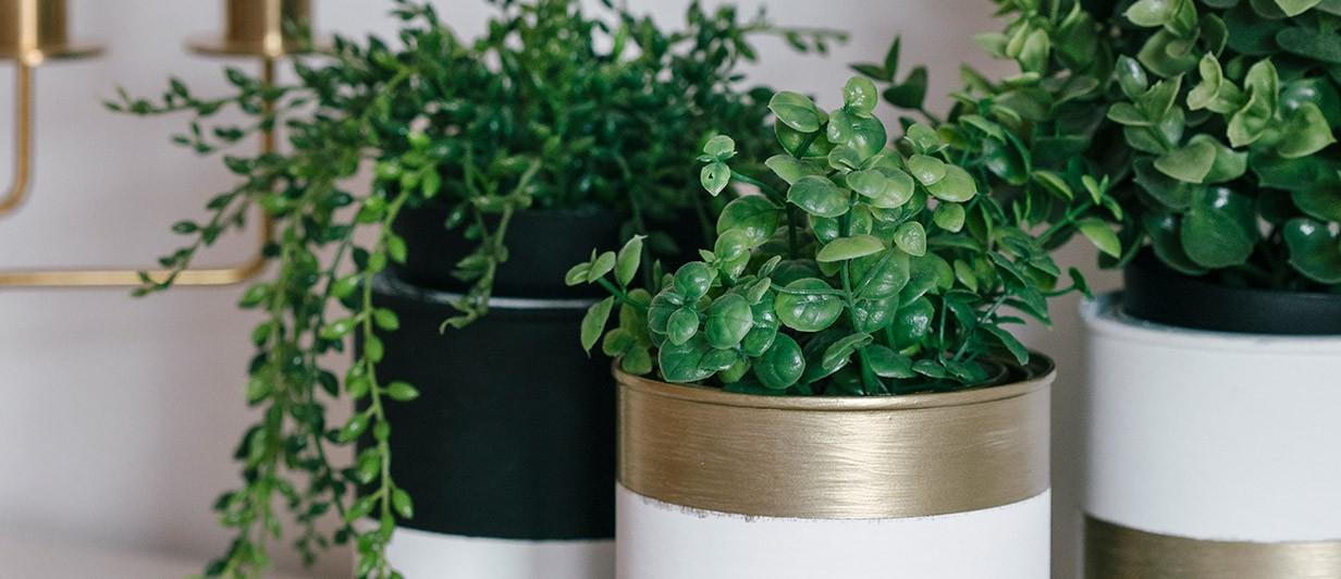 DIY: Como reutilizar latas de tinta